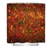 Fields On Fire Shower Curtain