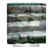 Fieldstone Stairs New England Shower Curtain