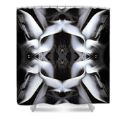 Fierce Flake 2795 Shower Curtain