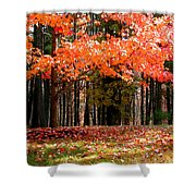 Fiery Leaves Shower Curtain