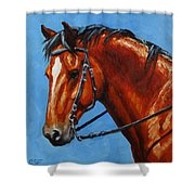 Fiery Red Bay Horse Shower Curtain by Crista Forest