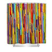 Fiesta Abstract Shower Curtain
