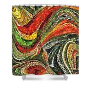 Fiesta Mexicana Shower Curtain