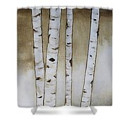 Fifteen Birch Trees Shower Curtain