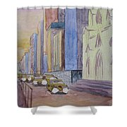 Fifth Ave At Dawn Shower Curtain