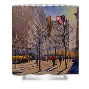 Fifth Avenue - Late Winter At The Met Shower Curtain