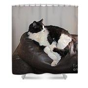 Figaro The Cat Shower Curtain