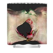 Fighting Bears Shower Curtain