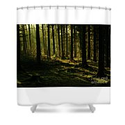 Fighting For Light Shower Curtain