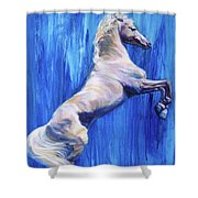 Fighting Spirit Shower Curtain