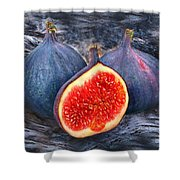 Figs 3 Shower Curtain