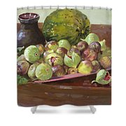 Figs And Cantaloupe Shower Curtain