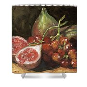 Figs And Grapes Shower Curtain