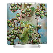 Figs3 Shower Curtain
