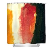 Figure In Orange And Black Shower Curtain