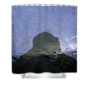 Figure In The Windshield Shower Curtain