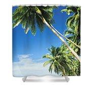 Fiji, Vanua Levu Shower Curtain by Peter Stone - Printscapes