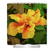 Fijian Hibiscus Abstract In Del Mar 2 Shower Curtain