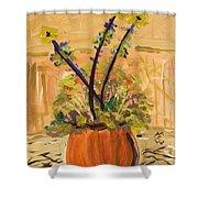 Filled Terra Cotta Vase Shower Curtain