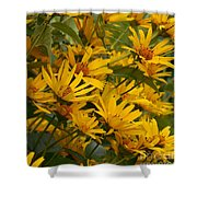 Filled With Sunflowers Vertical Shower Curtain