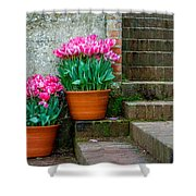 Filoli Tulips Shower Curtain
