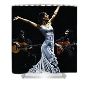 Finale Del Funcionamiento Del Flamenco Shower Curtain