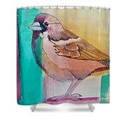 Finch Fun Shower Curtain