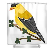 Finch In 2009 Shower Curtain