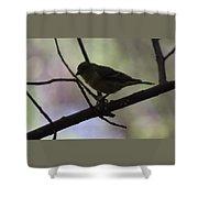 Finch Shadow 042814b Shower Curtain