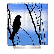 Finch Silhouette 1 Shower Curtain