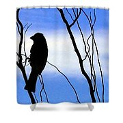 Finch Silhouette 2 Shower Curtain
