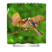 Finches In Motion I  Shower Curtain