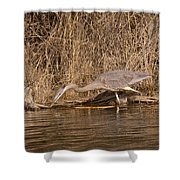 Finding Fish   Shower Curtain