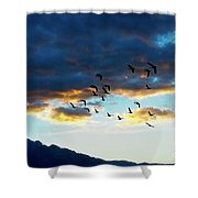 Finding Formation Shower Curtain