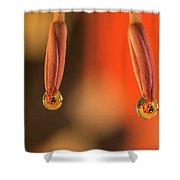 Finding Ladybug Shower Curtain