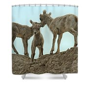 Finding My Own Way Shower Curtain