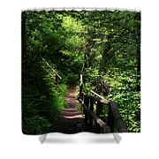 Finding The Right Path Shower Curtain