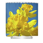 Fine Art Daffodils Floral Spring Flowers Art Prints Canvas Baslee Troutman Shower Curtain