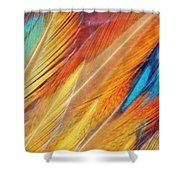 Fine Art Feathers Shower Curtain