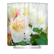Fine Art Florals Prints White Pink Rhodies Rhododendrons Baslee Troutman Shower Curtain