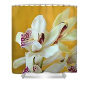 Fine Art- Orchid Shower Curtain