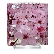 Fine Art Prints Spring Pink Blossoms Trees Canvas Baslee Troutman Shower Curtain
