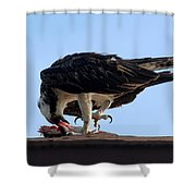 Fine Dinning Shower Curtain