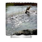 Fine Feathered Fisherman Shower Curtain