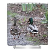 Fine Feathered Friends Shower Curtain