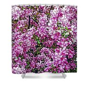 Fine Wine Cafe Apple Blossoms Shower Curtain
