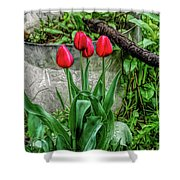 Fine Wine Cafe Red Tulips Shower Curtain