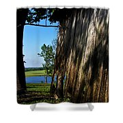 Fine Woodwork Shower Curtain