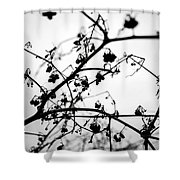 Fineart-nature-4 Shower Curtain