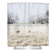 Fingal Winter Farmyard Shower Curtain
